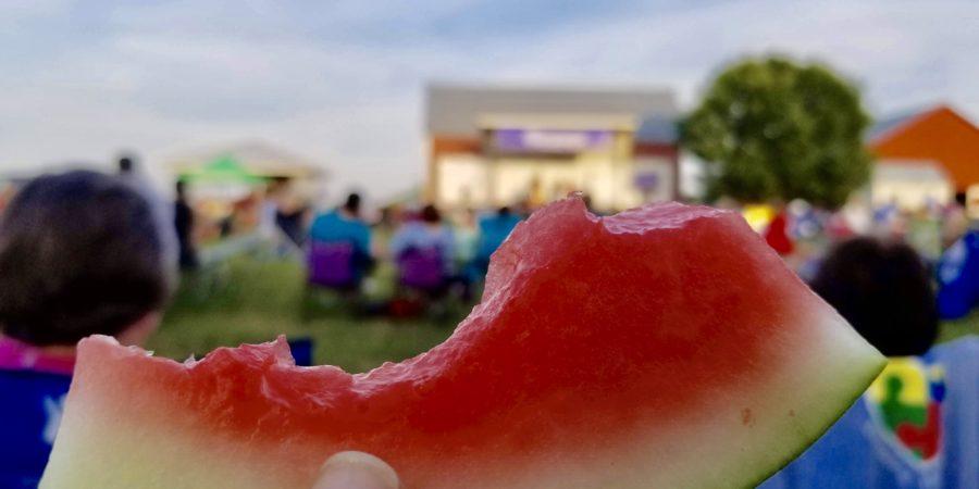 Summer Fun in Fairfax County